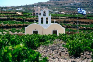 journey-greece-santorini-wine-tour