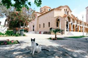 saint-nectarios-faliraki-rhodes-journey-greece