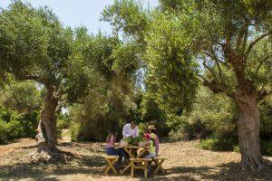 Farm-To-Table Experience at The Romanos Resort in Costa Navarino